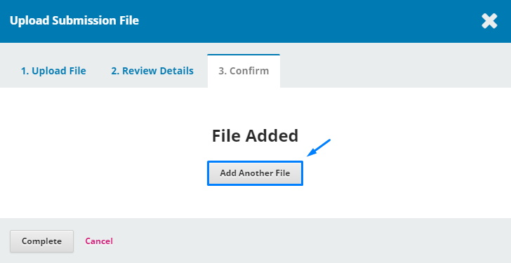 """In the """"Confirm"""" step, you can upload another file by selecting """"Add Another File"""""""